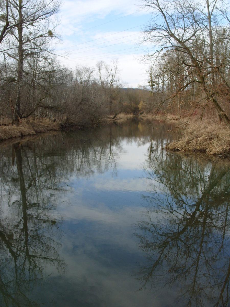Lichtenlake März 2010 (3)